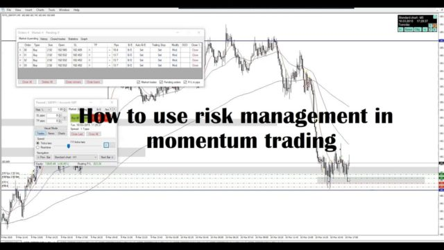 How to use risk management in momentum trading #35