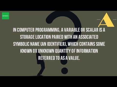 What Is A Variable In A Computer Program?