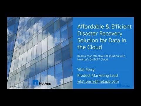 Affordable and Efficient Disaster Recovery Solutions for Data in the Cloud